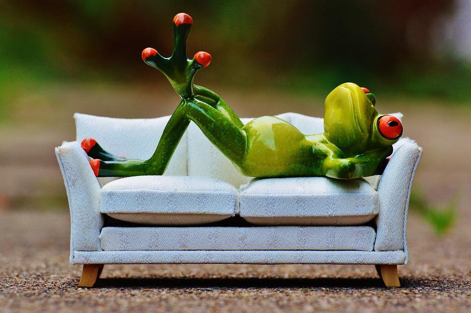 frog-