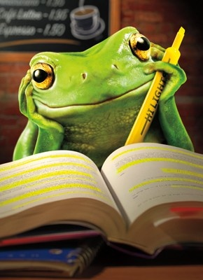 funny-frogs-close-reading