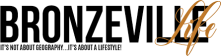 bronzeville Life